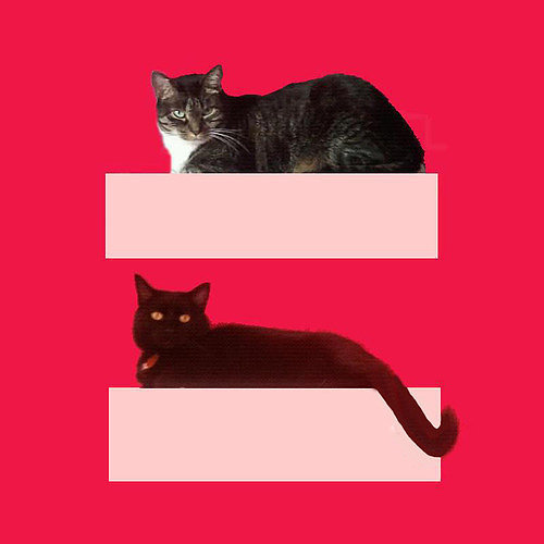 Social Media — The HRC Marriage Equality Sign