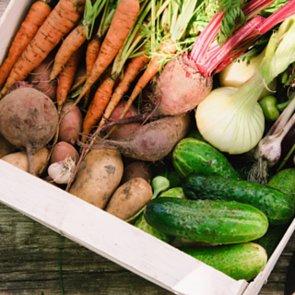 Sow a Vegetable Garden, and Reap Major Rewards