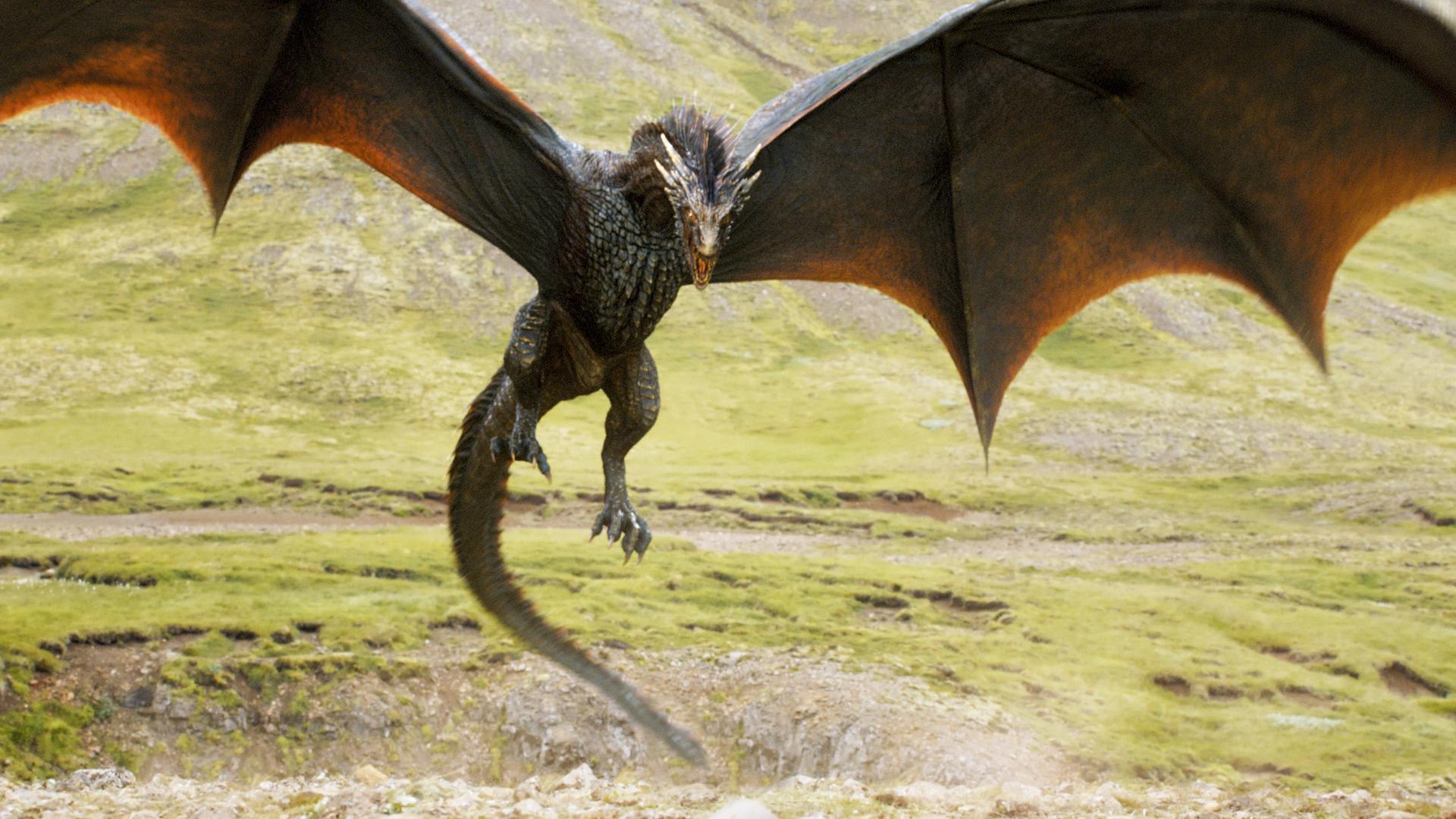One of Daenerys's dragons.