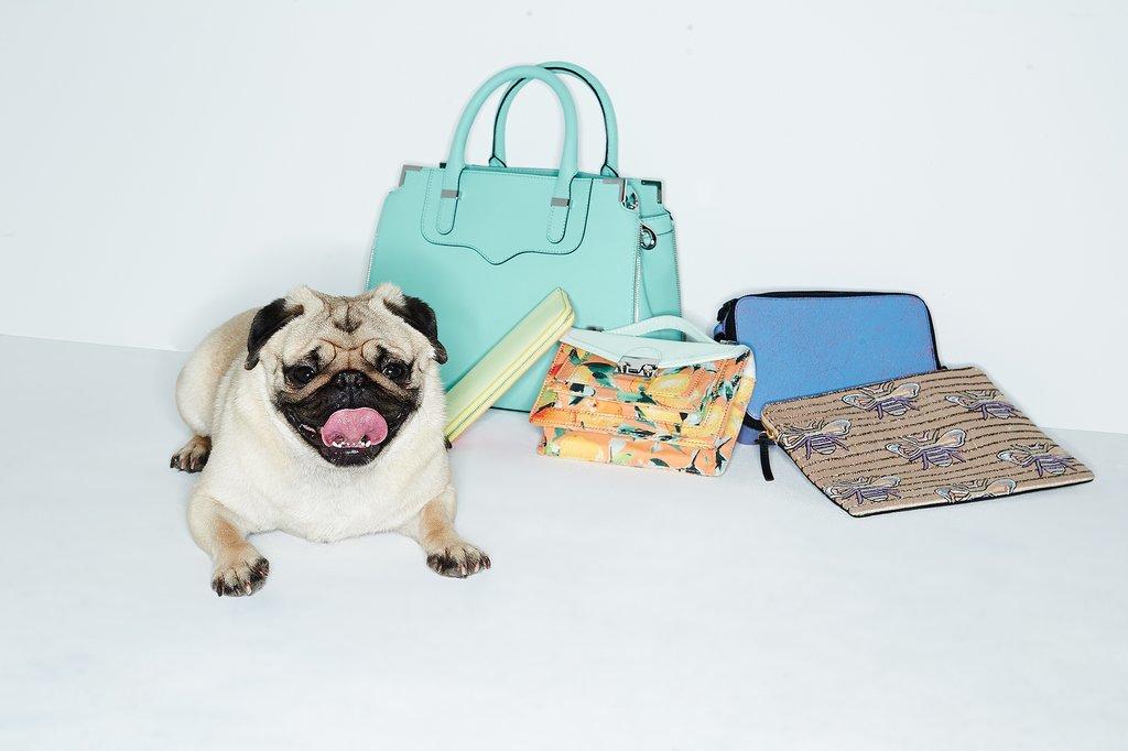 Shopbop Spring 2014 Accessories Edit