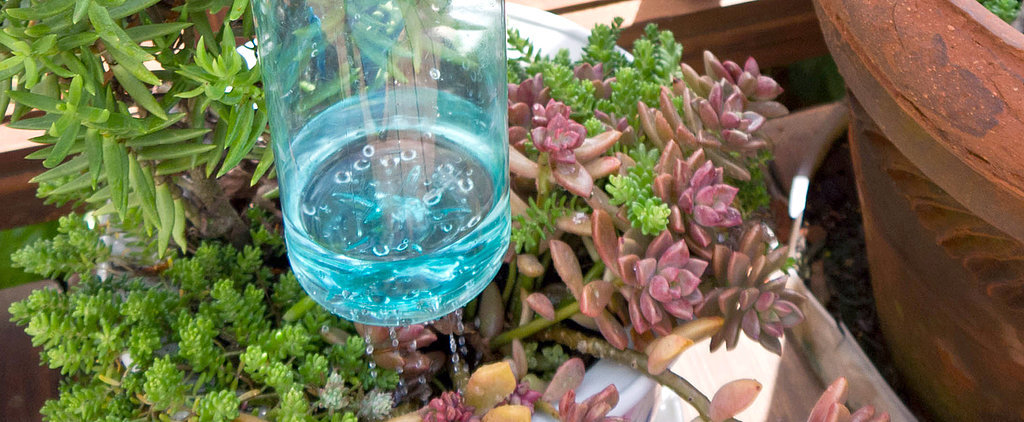 Turn a Plastic Bottle Into a Thumb-Controlled Watering Can
