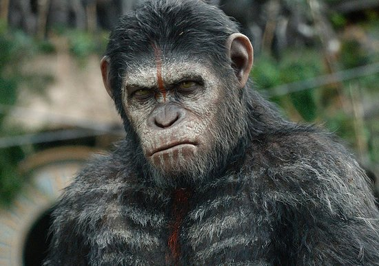 So This Is What Happens 10 Years After Rise of the Planet of the Apes