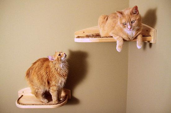 Stylish Pet Furniture Finds on Etsy