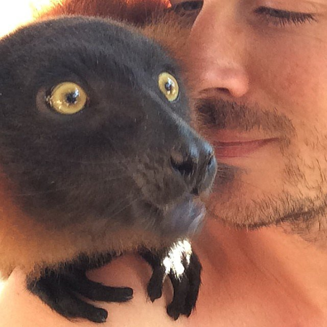The Lemur Selfie