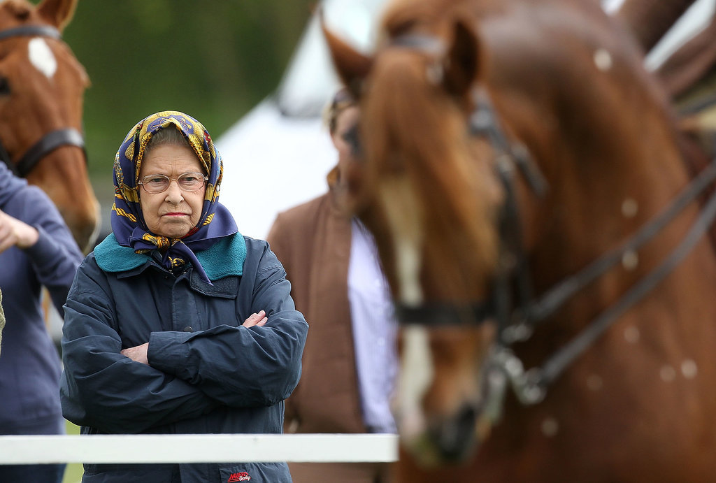 When Her Horses Are Losing a Race