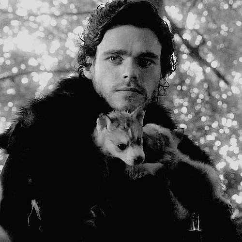 When He Holds the Baby Direwolves in His Arms