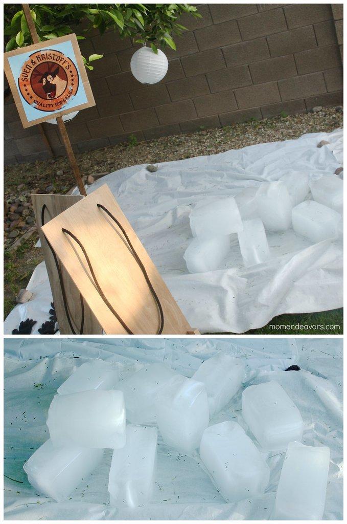 Frozen Ice Block Races
