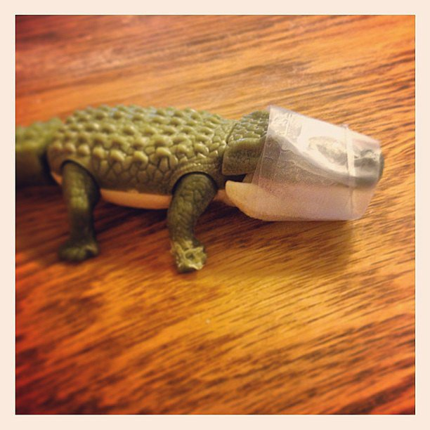 Taped-Up Gator