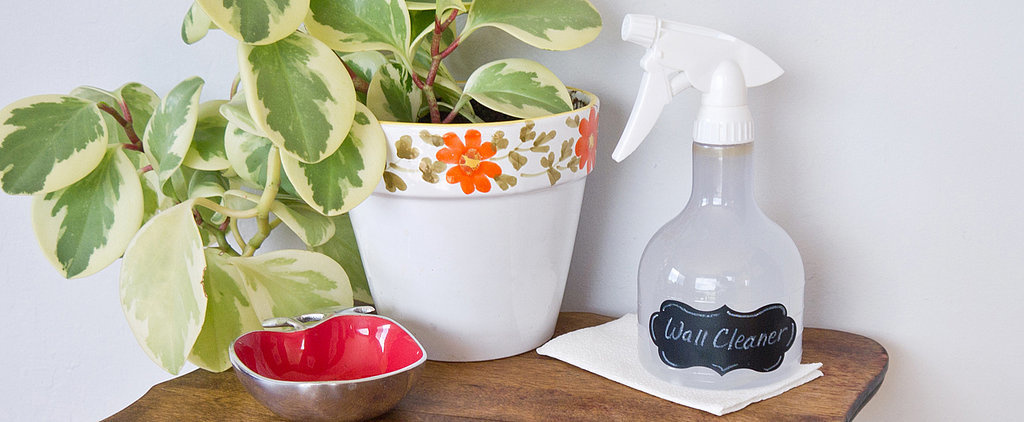 Get Rid of Marks With DIY Wall Cleaner