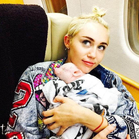 Miley Cyrus Adopts a Pet Pig