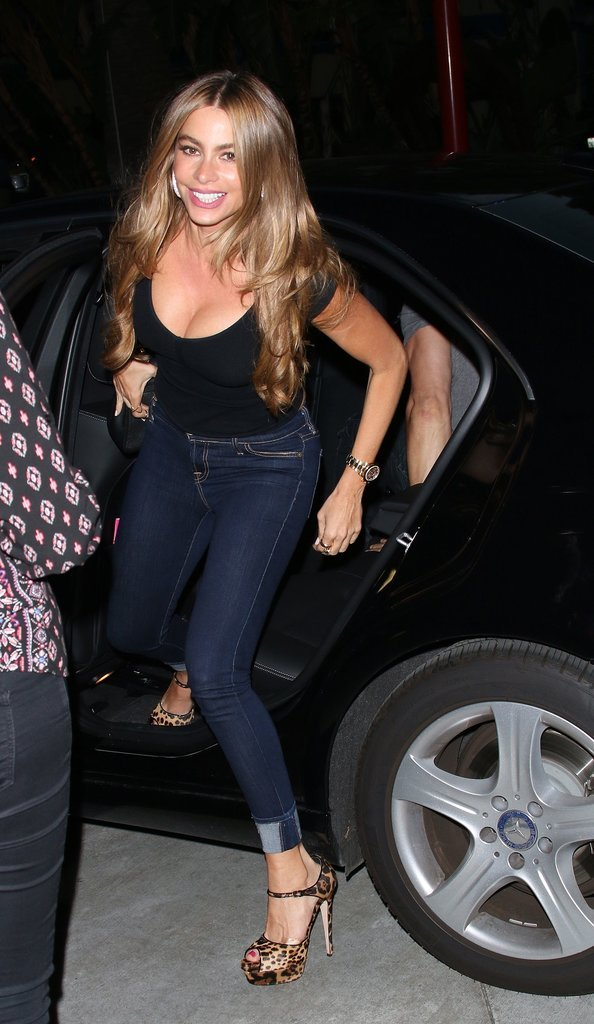 Sofia Vergara arrived with Joe Manganiello.