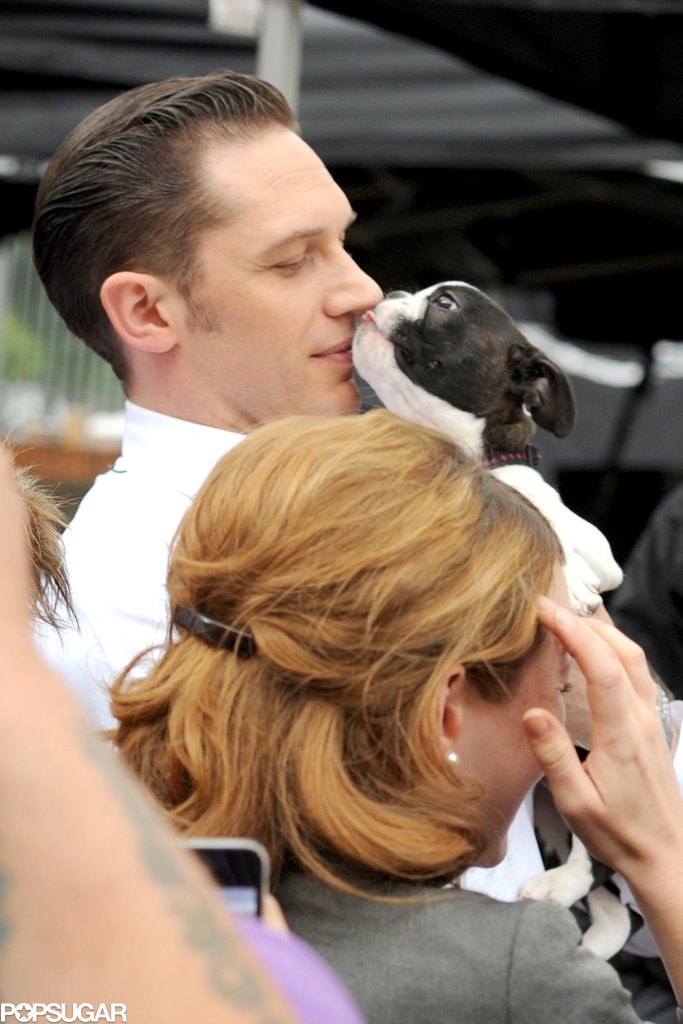 Tom Hardy Playing With Puppies Is the Most Adorable Thing You'll See Today