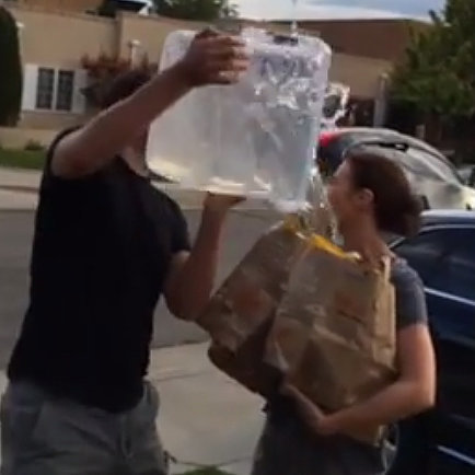 John Krasinski and Emily Blunt Ice Bucket Challenge