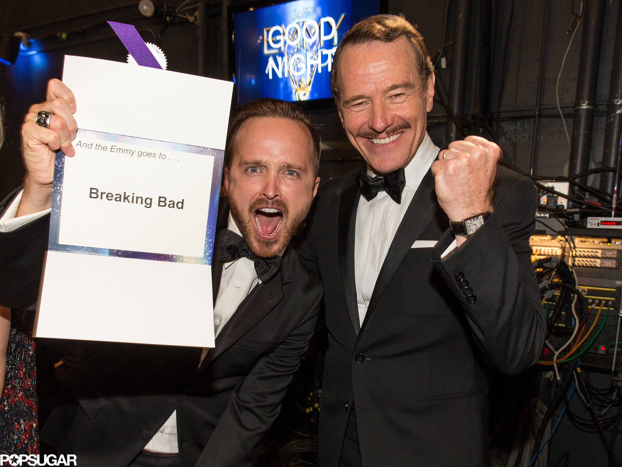 Aaron Paul and Bryan Cranston got animated about their win.