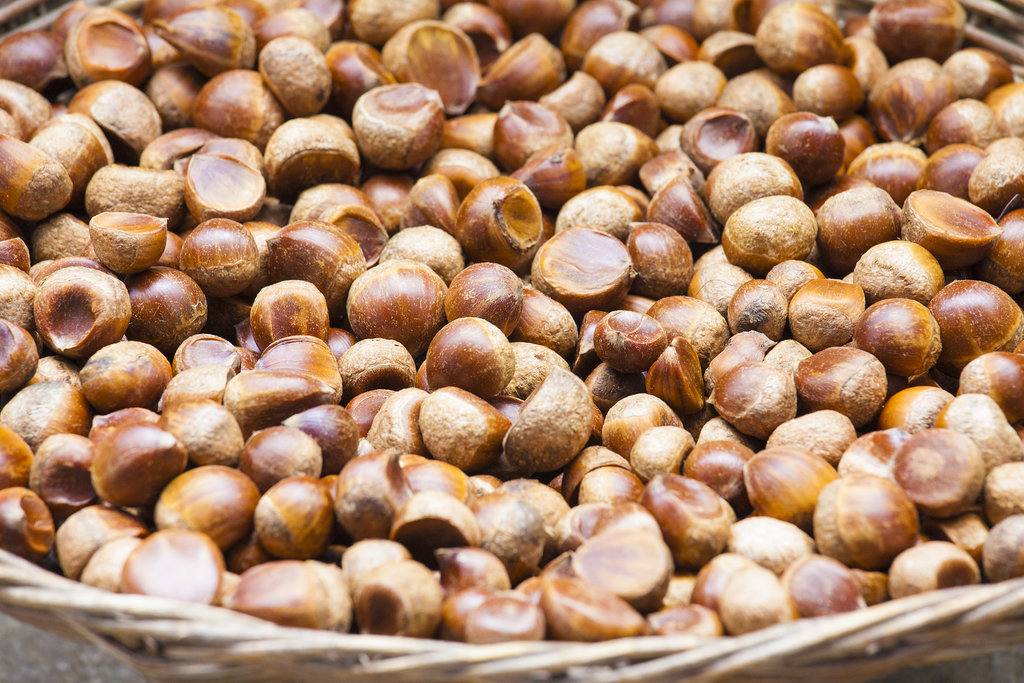 The Fall Food: Chestnuts