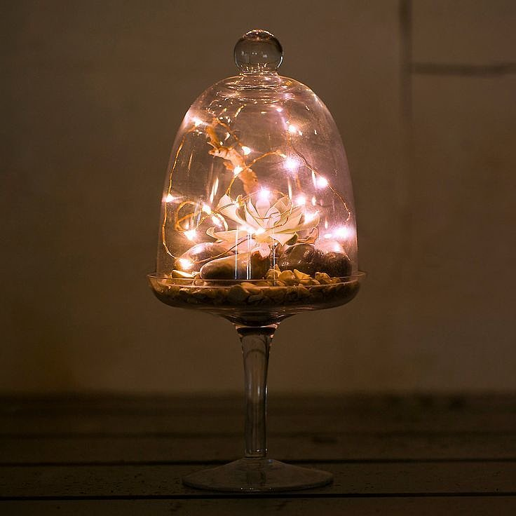 String Lights That Do Not Need To Be Plugged In : Battery-powered string lights? Genius! Terrain s Stargazer Lights Editor Picks: October Home ...