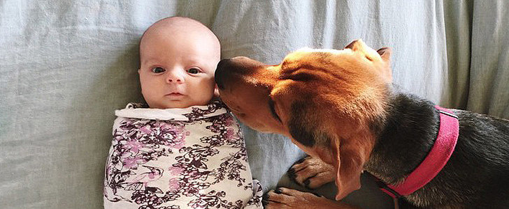 These Baby and Puppy Napping Buddies Are Your Smile Fix For the Day