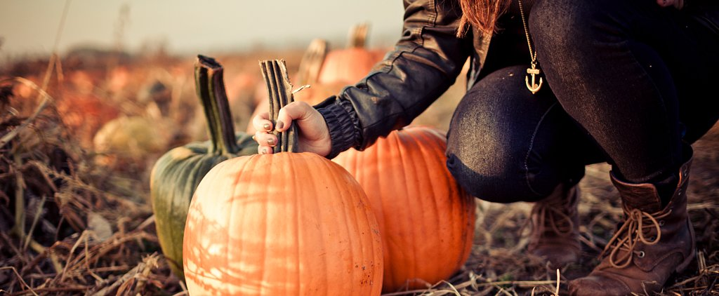 50+ Cheap or Free Ways to Celebrate the Fall Season