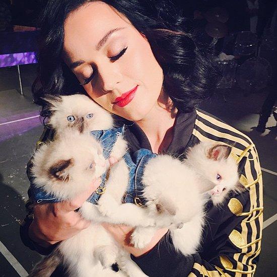 Celebrity Instagram Pictures | Nov. 6, 2014