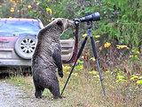 The Story Behind That 'Grizzly Bear Photographer' Picture (VIDEO)