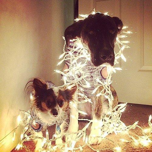 Christmas Pinterest Fails