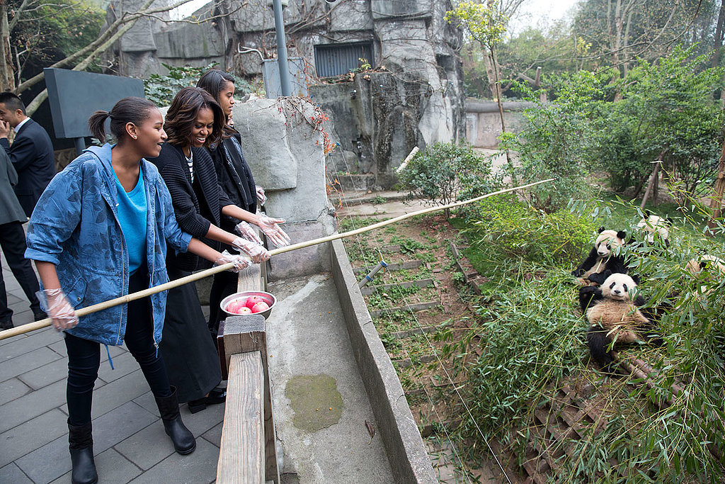 The Obama women fed apples to pandas at the Giant Panda Research Base in Chengdu, China, during their March trip.