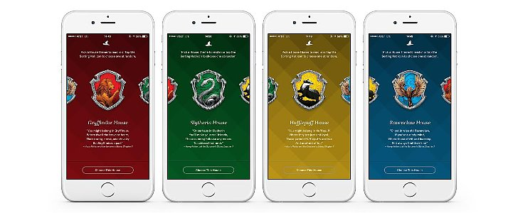 Now Read the Harry Potter Series in the Theme of Your Hogwarts House