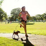 Why Your Pet Should Be As Fit As You