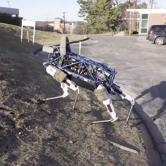 Spot Boston Dynamics Robot