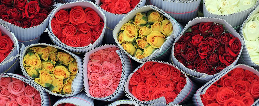 Count Your Roses to Decode Your Valentine's Hidden Message