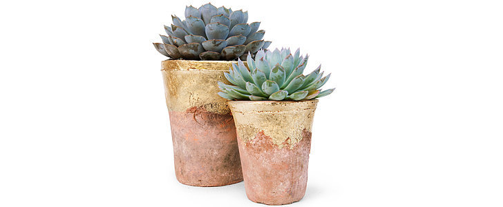 This DIY Adds a Glam Twist to Terra-Cotta Planters