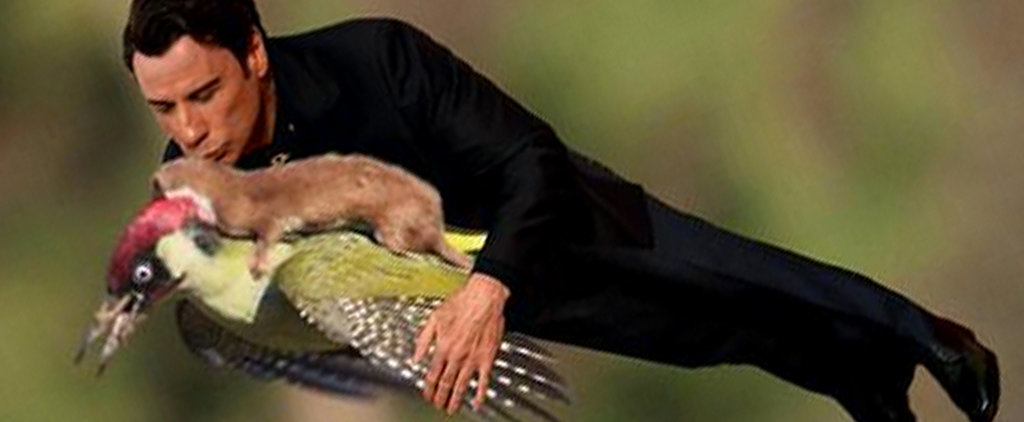 Meet the #WeaselPecker and More Viral Hits!