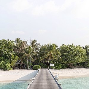 A Virtual Trip to the Maldives with Cereal Magazine