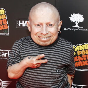 Verne Troyer Health Scare After Seizure at Comic Con
