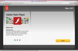 Have You Installed the New Flash Player on Safari?