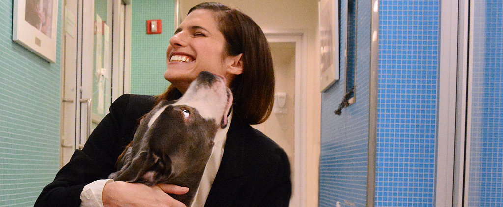 Lake Bell's Rescue Dogs Provide Unconditional Love For Her New Baby