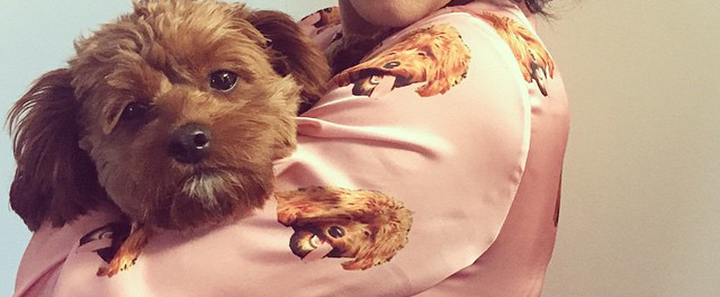 Katy Perry's New PJs Match Her Puppy
