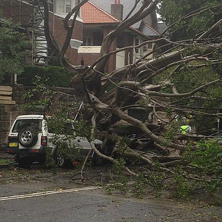 Pictures of the #SydneyStorm