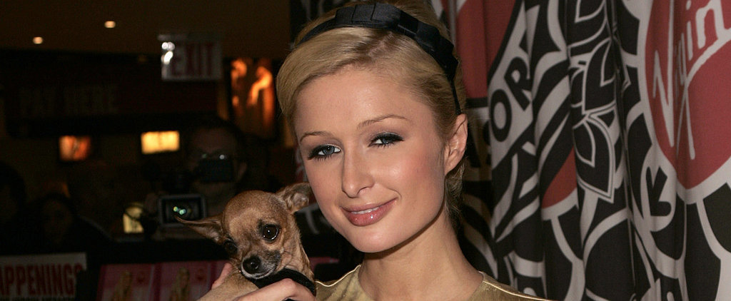 Paris Hilton Shares Heartfelt Messages and Pictures After Her Dog Dies