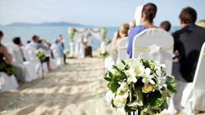 Etiquette 101: The Dos And Don'ts Of Being A Good Wedding Guest