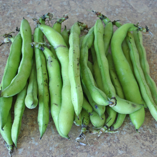 How to Peel Fava Beans Fast