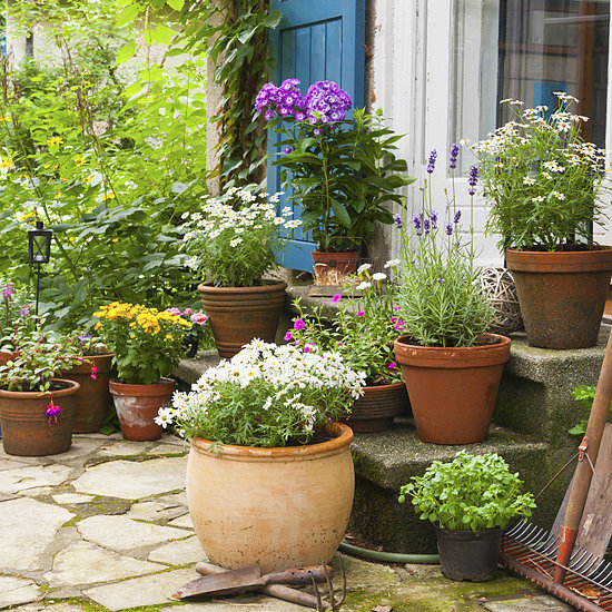 HGTV Elbow Room Host Chip Wade Shares the Best Backyard DIYs
