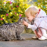 Is Your Child's Bond Stronger With Their Siblings or With the Family Pet?