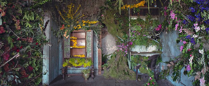Thousands of Flowers Turn This Abandoned House Into a Fairy-Tale Work of Art