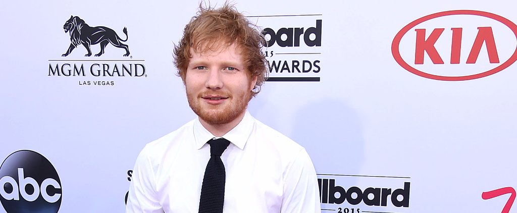 Ed Sheeran and Kermit the Frog Performed a Duet For Red Nose Day
