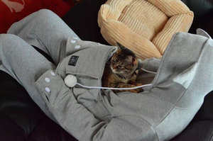 This Hoodie Has A Creepy Cat-Snuggling Pouch To Make Your Pets Hate You