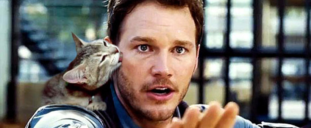 Here's What Jurassic World Would Look Like Starring Cats Instead of Dinosaurs