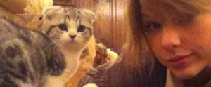 24 Times You Wished You Were Taylor Swift's Cats