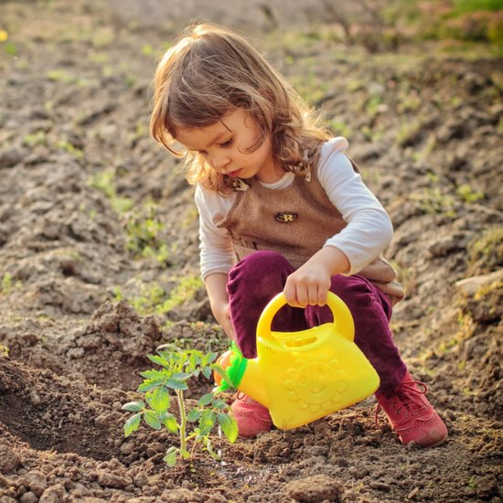 How to Teach Kids About Gardening