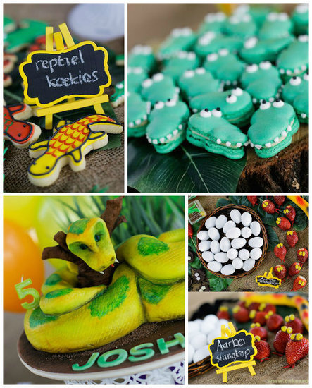 Reptile and Snake Kids' Birthday Party